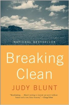 Cover Image for Breaking Clean