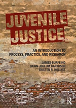 Cover Image for Juvenile Justice: An Introduction to Process, Practice, and Research