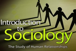 Course Photo for Introduction to Sociology/Hamilton