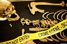 Course Photo for Principles of Forensic Anthropology