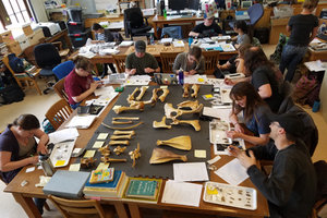 Course Photo for Archaeological Field School: Historical Archaeology Lab