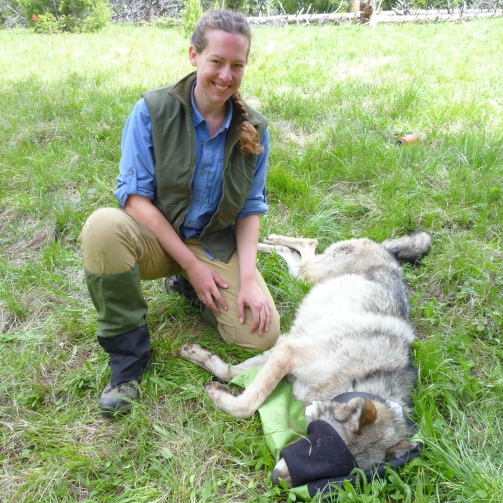 Faculty staff wildlife biology university of montana for Oregon fish and wildlife jobs