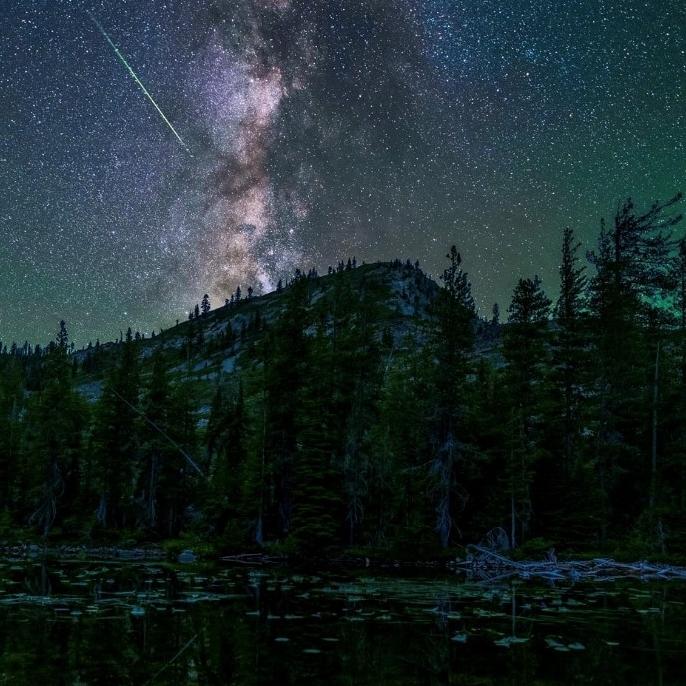 Melissa Reimann